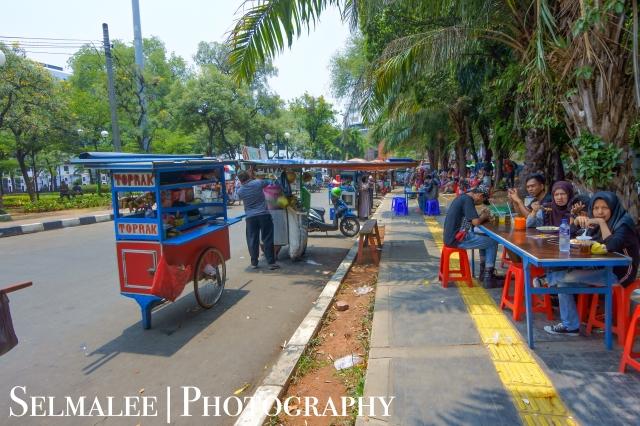 Indo blog-8